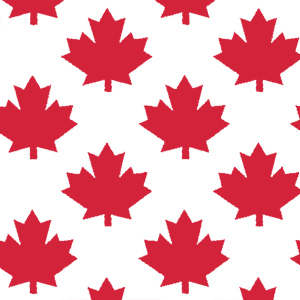 """648051 - 20"""" x 30"""" Canada Pattern Tissue Paper Maple Leaf Red on White"""